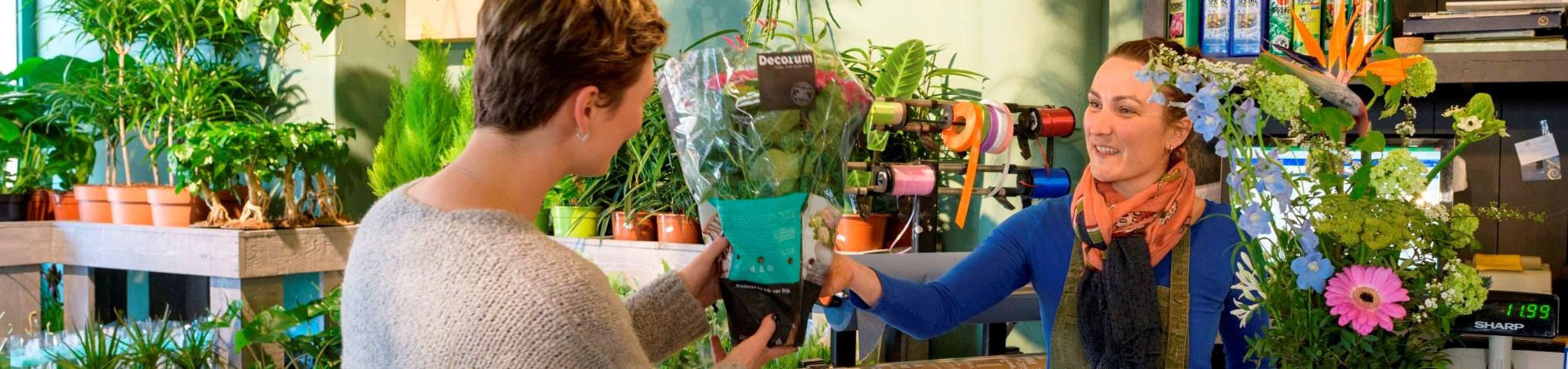Duurzame bloemen en planten