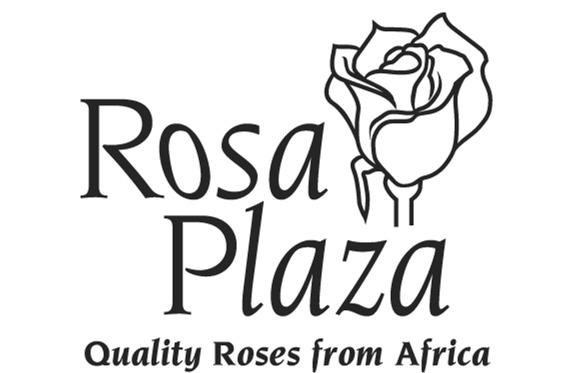 Rosa Plaza